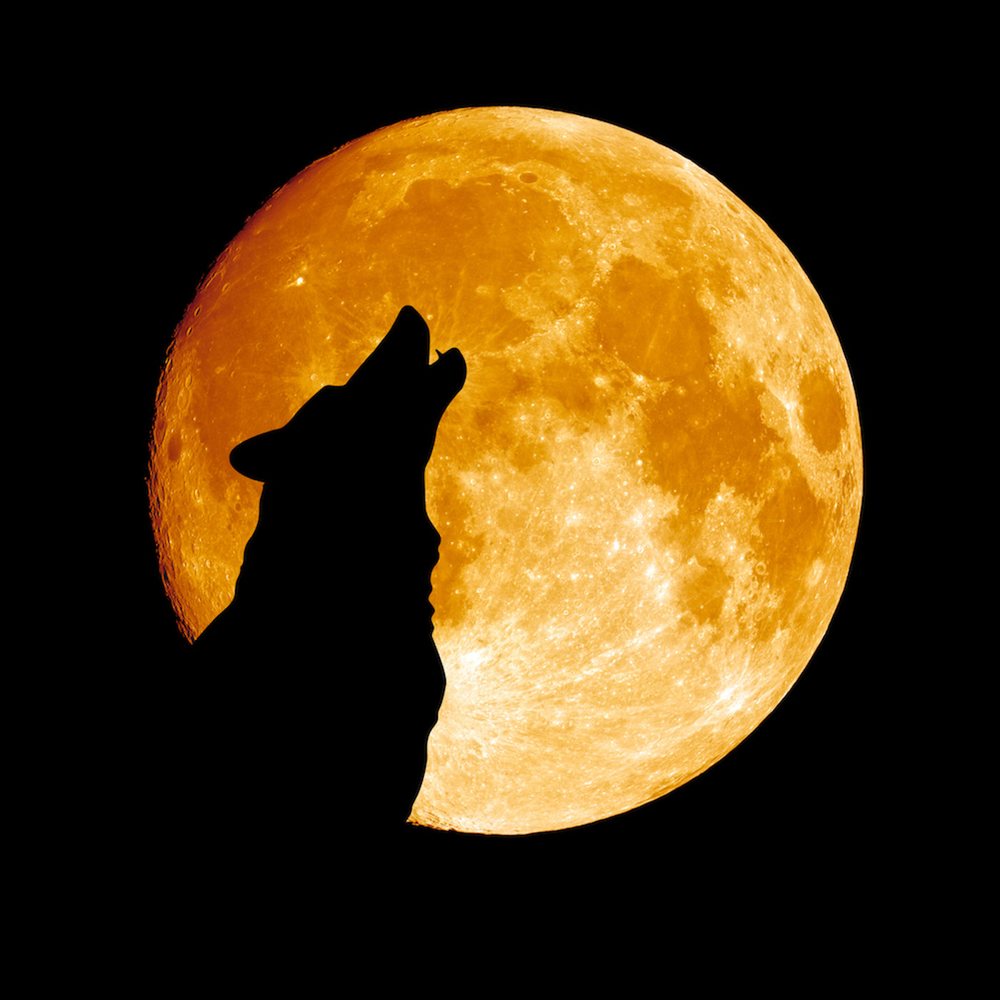2738 Місячні ритуали очищення
