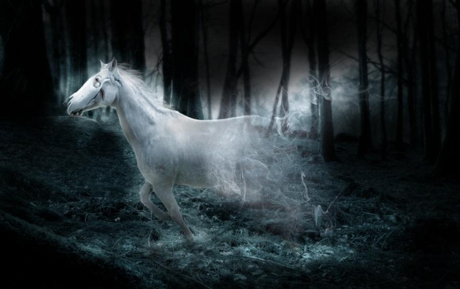 3138 Привиди живуть поруч