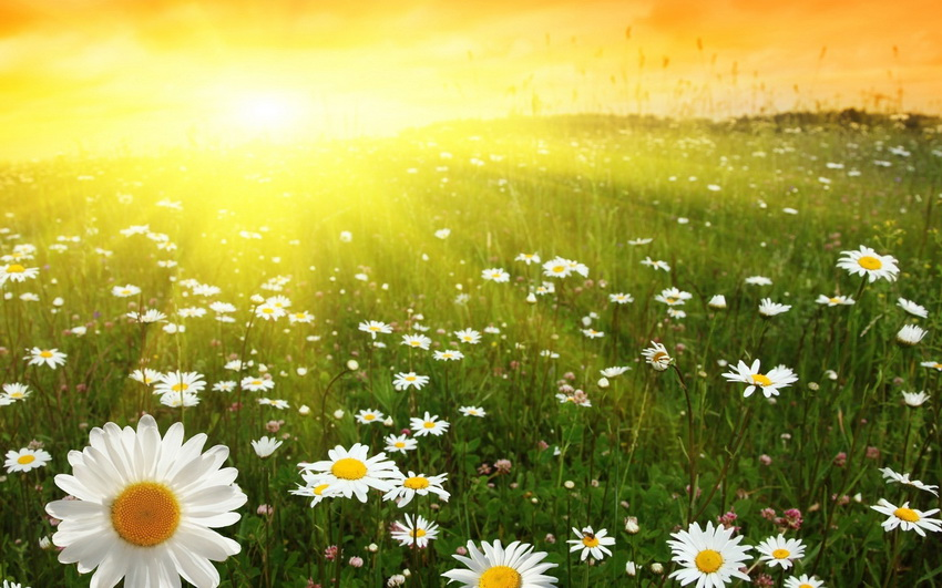 3352 Місячний календар медитацій на вересень 2020