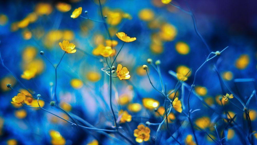3362 Місячний календар медитацій на квітень 2020