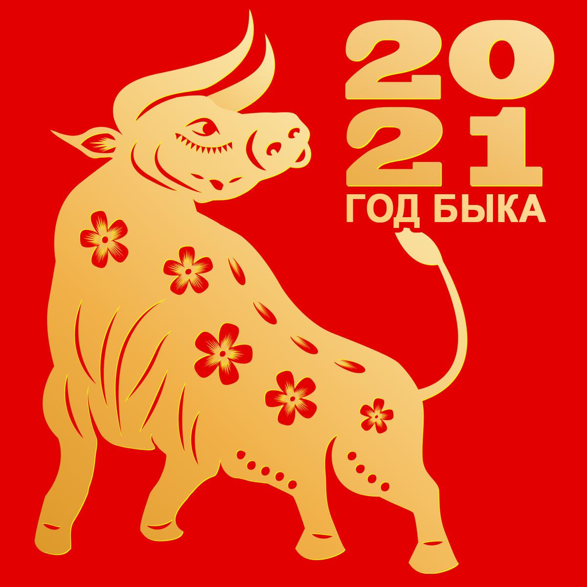3987 Китайский Новый год 2021: какого числа и как встречать год Белого Металлического Быка