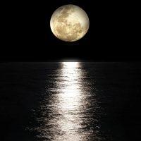 4205 Гороскоп на 21 февраля 2021 года. Луна сегодня 21.02.2021